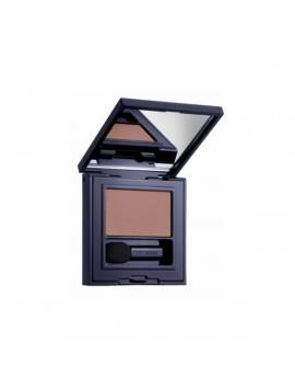 Estee Lauder Pure Color Envy Eyeshadow Chocolate Bliss 25